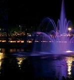 blog_image:haselh_13939498475315fc973be75.jpg:end_blog_image